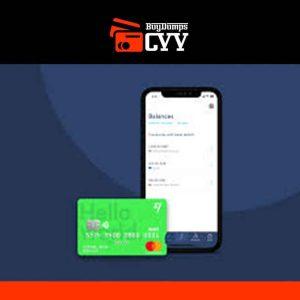 Transferwise VERIFIED BUSINESS account + Mastercard + SIM card.